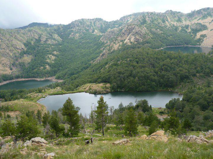 5 liqenet ne Shrunkse
