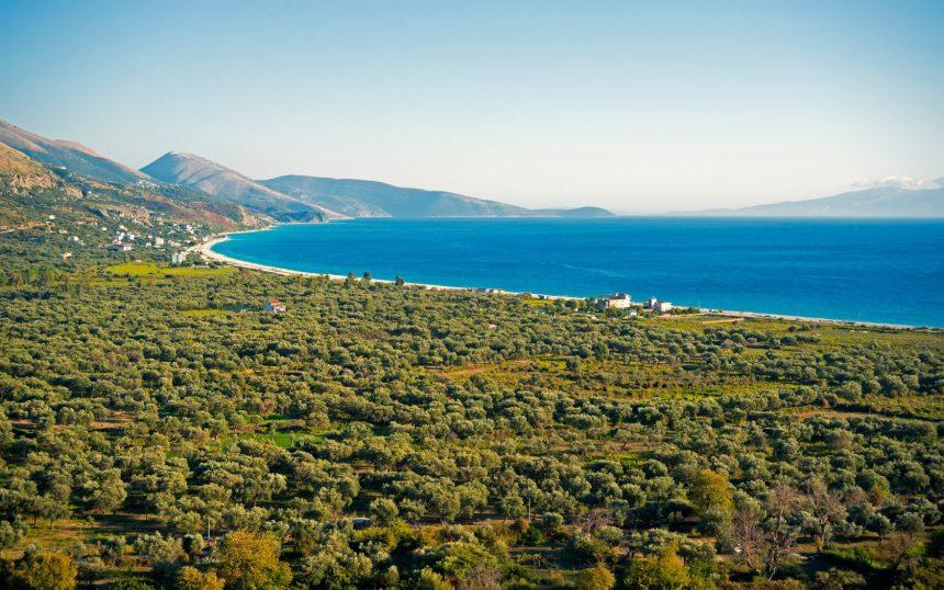 Italian Entrepreneurs Suggest Albania to Investors