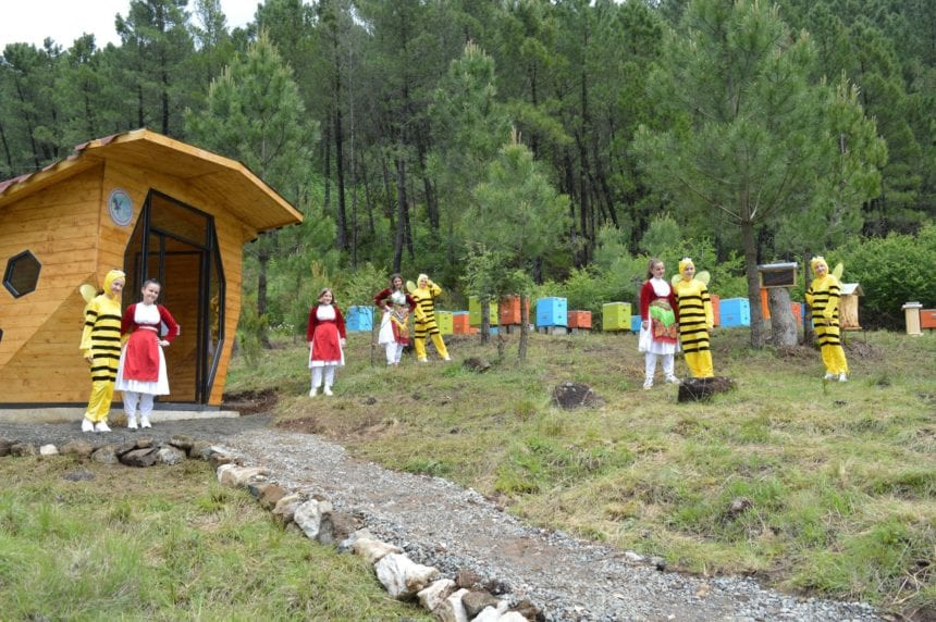 Albania's First Bee House to Keep Pollinators Buzz Alive