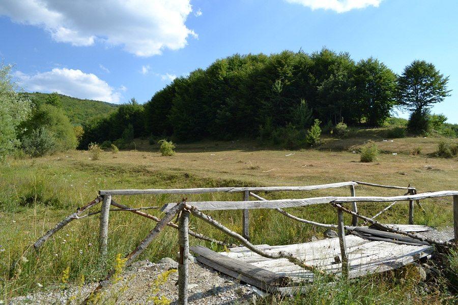 Tourism Transforming Natural Resources