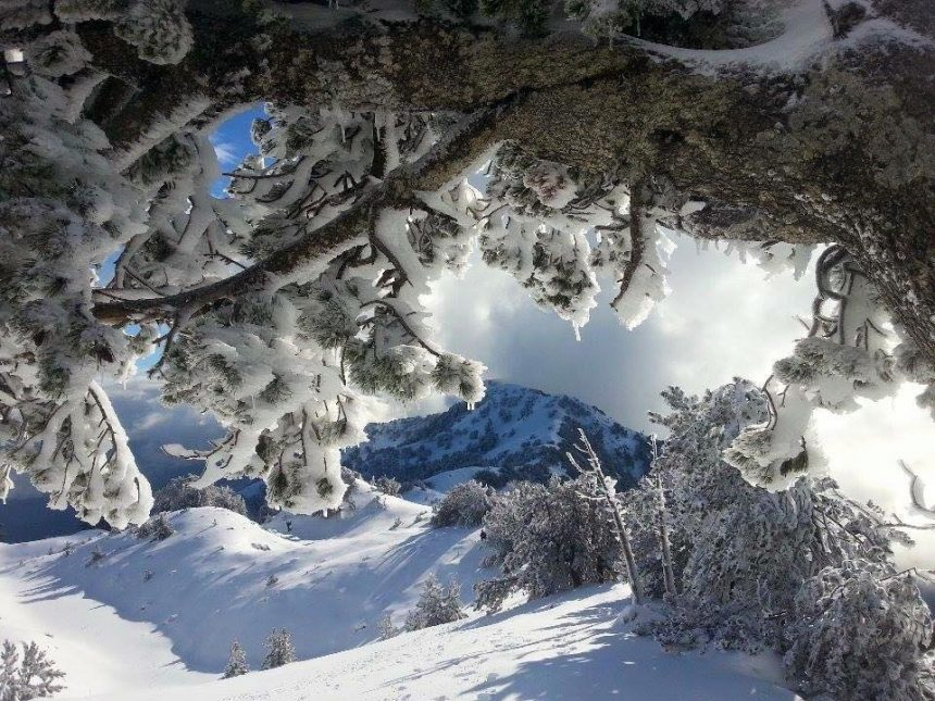 Snow tourism continues in spring season