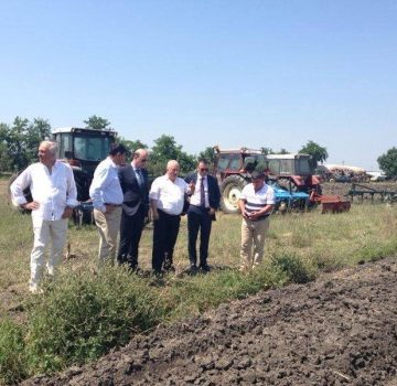 New strawberries farm inagurated in Lushnje