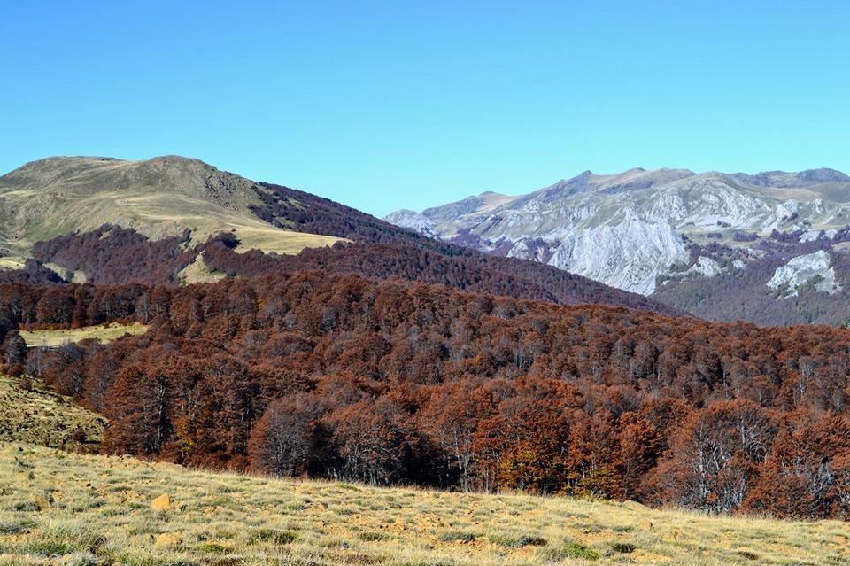 Shebenik Jabllanica National park in Autumn