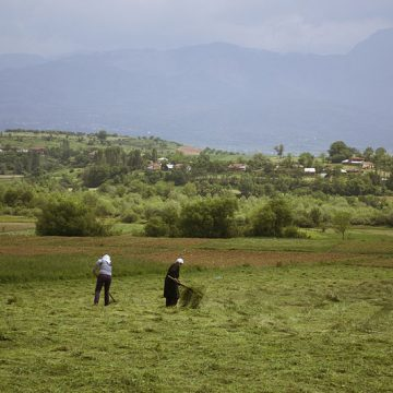 Albanian Agriculture Has the Lowest Budgetary Expenditures in the Region