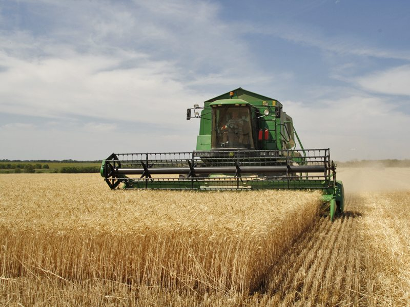 7700 Farmers Pass the First Phase for the €5 mln Fund