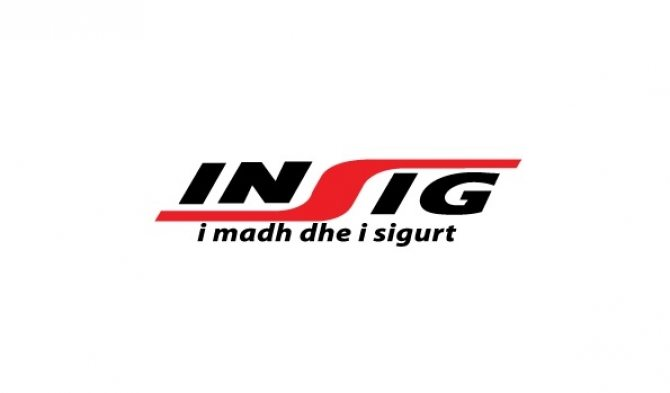 Public tender for INSIG opened • IIA