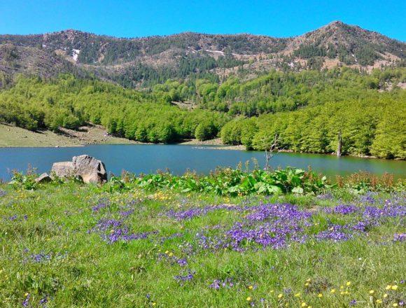 Travel the Unknown: Explore Kacnia Glacial Lakes in Dibra