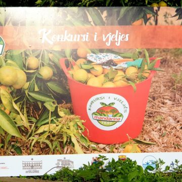Manderina Fest Celebrates Konispoli's Agri & Tourism Potential