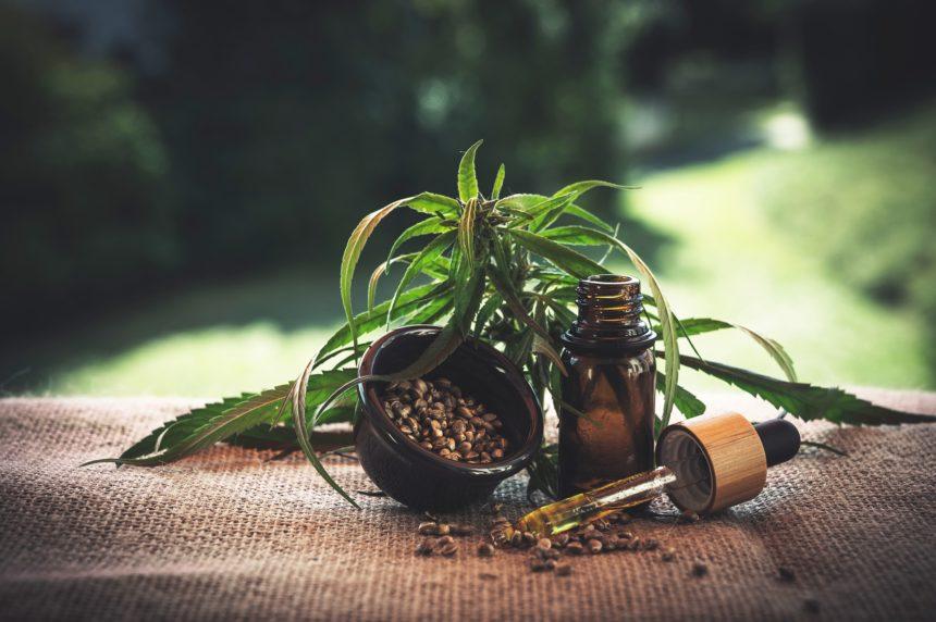 Albania Plans to Legalize Marijuana for Medical Use