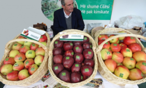 apples made in Albania