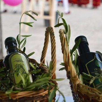 Albanian Olive Oil Production to increase while Top Producing Countries Face Crisis