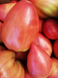 Albanian Oxheart Tomato