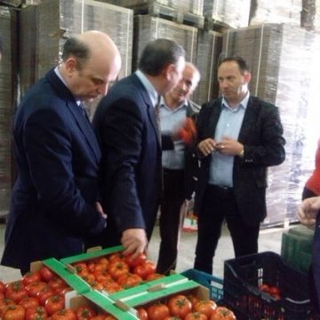 Package with 40 facilitating measures for farmers in Albania