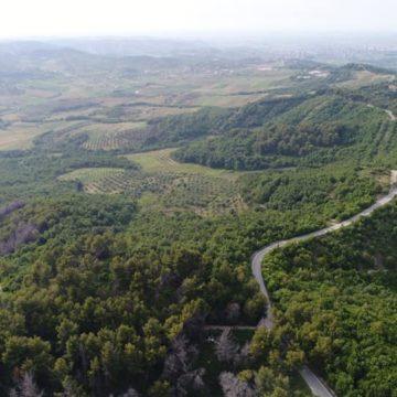 Discover Hinka Waterfall and Peshtani Hills in Fier