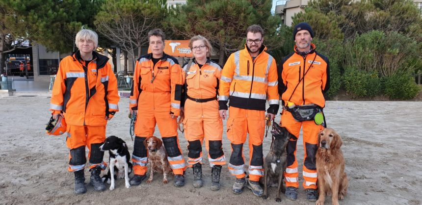 Meet the Hero Rescue Dogs that Helped in Albania Earthquake