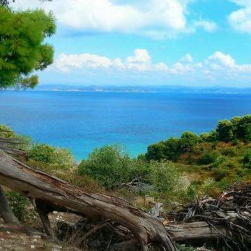Karaburun-Sazan Marine Park Welcomed Over 39,000 Visitors