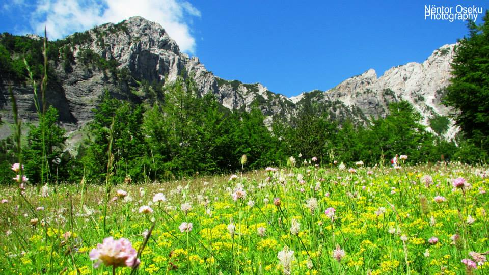 valbona valley 3