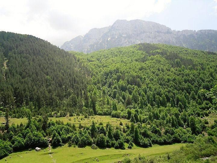 Zall Gjocaj National Park